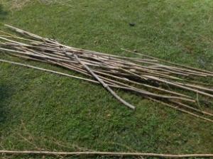 bamboo kanes